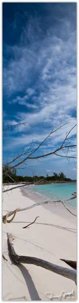 Cotton Bay Beach Eleuthera