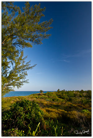 View from Northside Inn Eleuthera