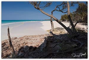 Ridley Head Beach Eleuthera
